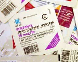 Continue reading: Police issue warning after fentanyl patches stolen