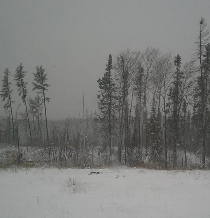 St. Theresa Point Island Lake Manitoba snow