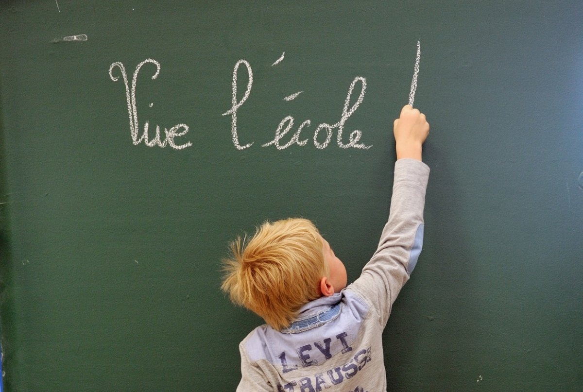 It's school board elections in Quebec -- but which school board are you voting in?.