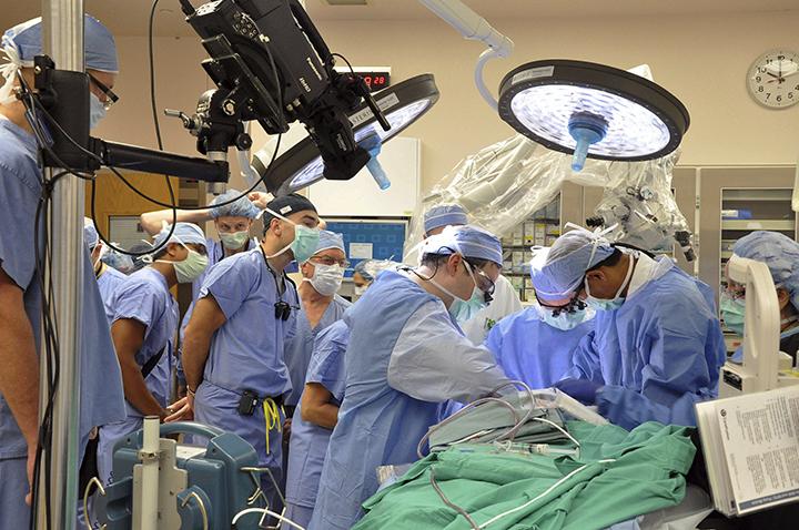 NDP wants secret info on Ontario's top billing doctors made public - image