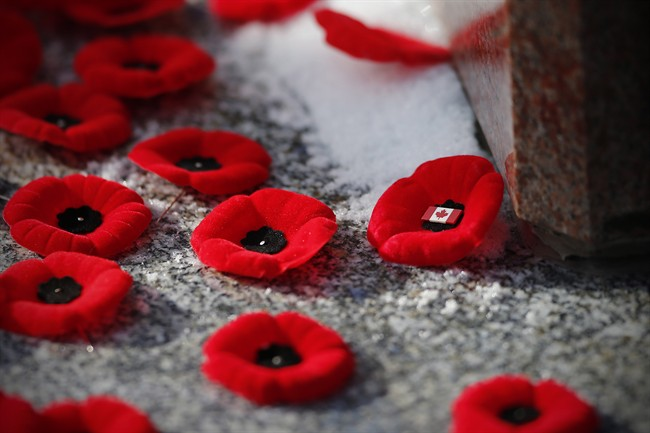 Poppies are placed on a cenotaph during a Remembrance Day service in Winnipeg in 2014.