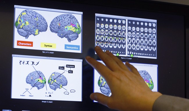 Leila Wehbe, a Ph.D. student at Carnegie Mellon University in Pittsburgh, displays images that used brain scans made from volunteers in a recent experiment while in her office on Wednesday Nov. 26, 2014.