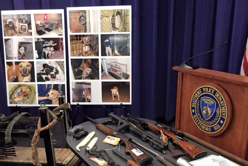 Baltimore police say they recovered 225 dogs, including 50 puppies, and at least 20 weapons.