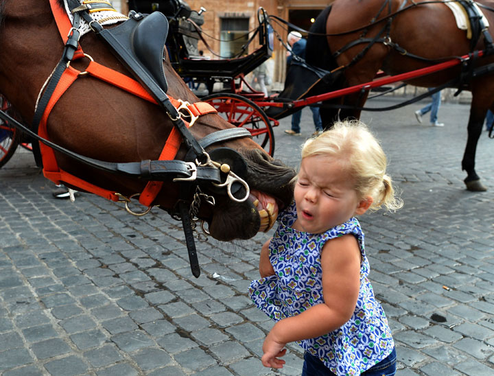 A little girl reacts as a horse tries to catch her at Piazza di Spagna on October 2, 2014 in Rome.