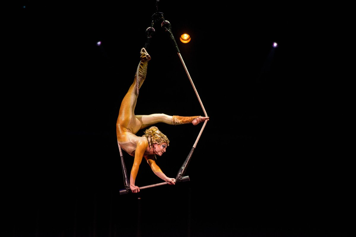 The Cirque du Soleil has signed a deal to sell a majority stake in the famed circus group to U.S. private equity firm TPG for an undisclosed price.
