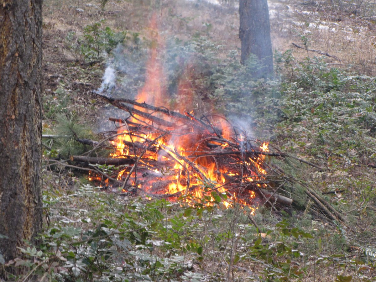 The province of B.C. has announced category 2 and 3 open-burning bans for the Southeast Fire Centre. For the Kamloops Fire Centre, which includes the Okanagan, category 2 fires are allowed, but category 3 fires are prohibited. Camp fires are still allowed in both fire centres.