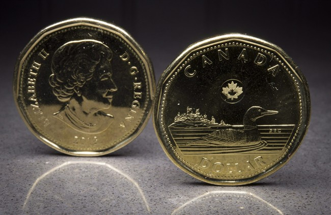 Two loonies are pictured in North Vancouver, B.C. Monday, Jan. 26, 2015. THE CANADIAN PRESS/Jonathan Hayward