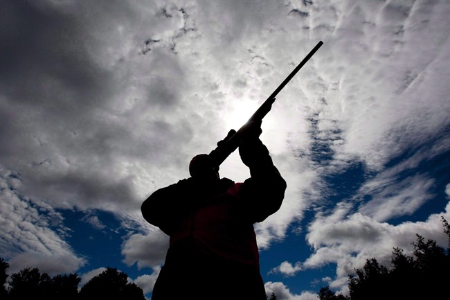 A rifle owner checks the sight of his rifle at a hunting camp property in rural Ontario, west of Ottawa, on Wednesday Sept. 15, 2010.