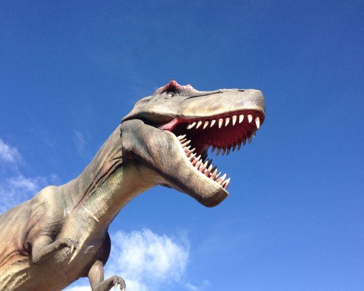 Dinosaurs Calgary Zoo