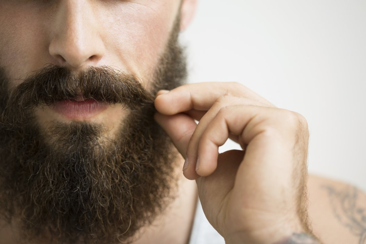 Could this beard be full of germs?.