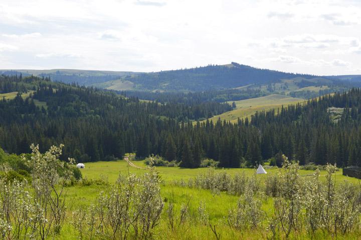 Cypress Hills Interprovincial Park
