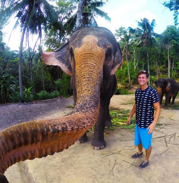 This elephant selfie is garnering worldwide attention.