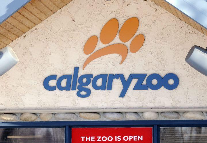 Calgary Zoo file