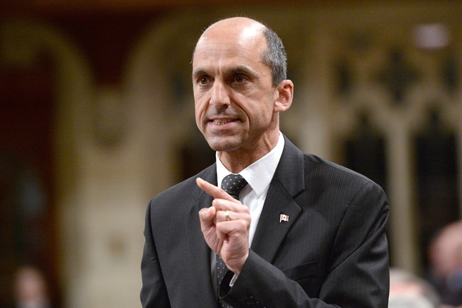Public Safety Minister Steven Blaney answers a question during question period in the House of Commons on Parliament Hill in Ottawa on June 16, 2015.