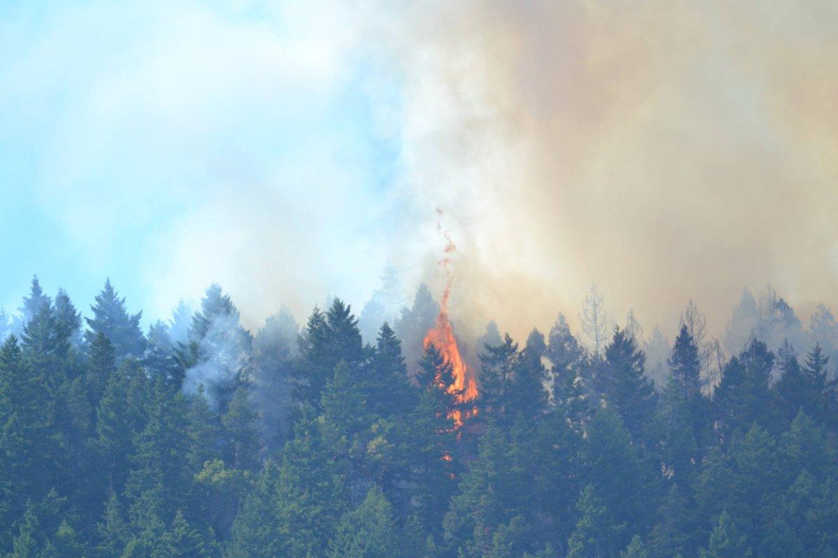 A fire burns near Sechelt, B.C. on July 2, 2015.