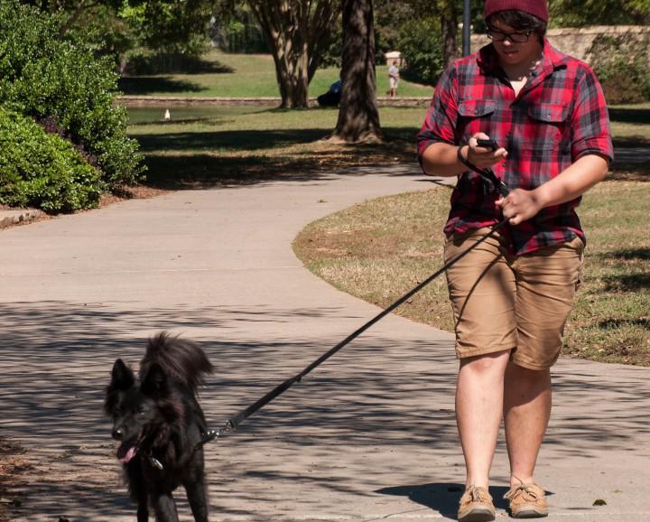 Man walking dog and using phone.