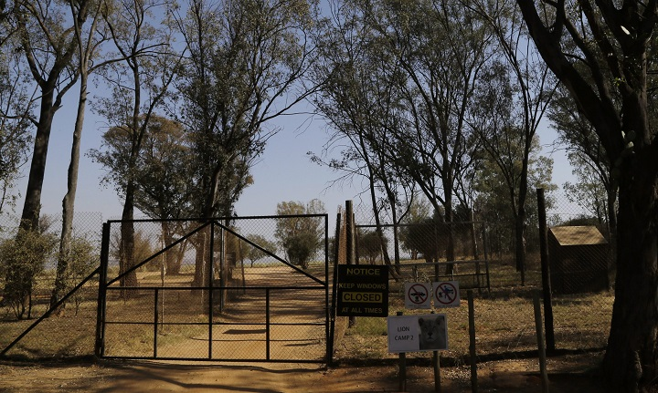 A general view of an enclosure of the Lion Park, in Johannesburg, South Africa, Tuesday, June 2, 2015. (AP Photo/Themba Hadebe).