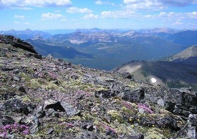 Alberta's Castle Wilderness area.