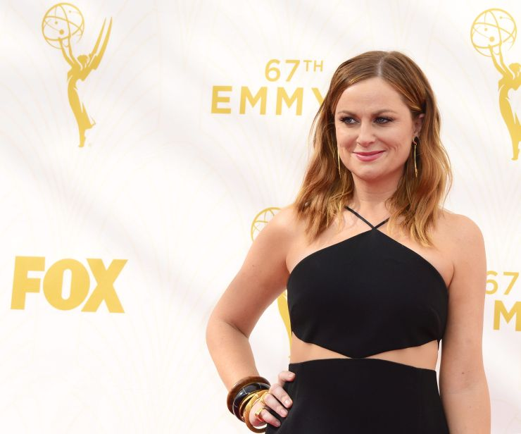 Amy Poehler arrives for the 67th annual Primetime Emmy Awards held at the Microsoft Theater in Los Angeles, California, USA, 20 September 2015.