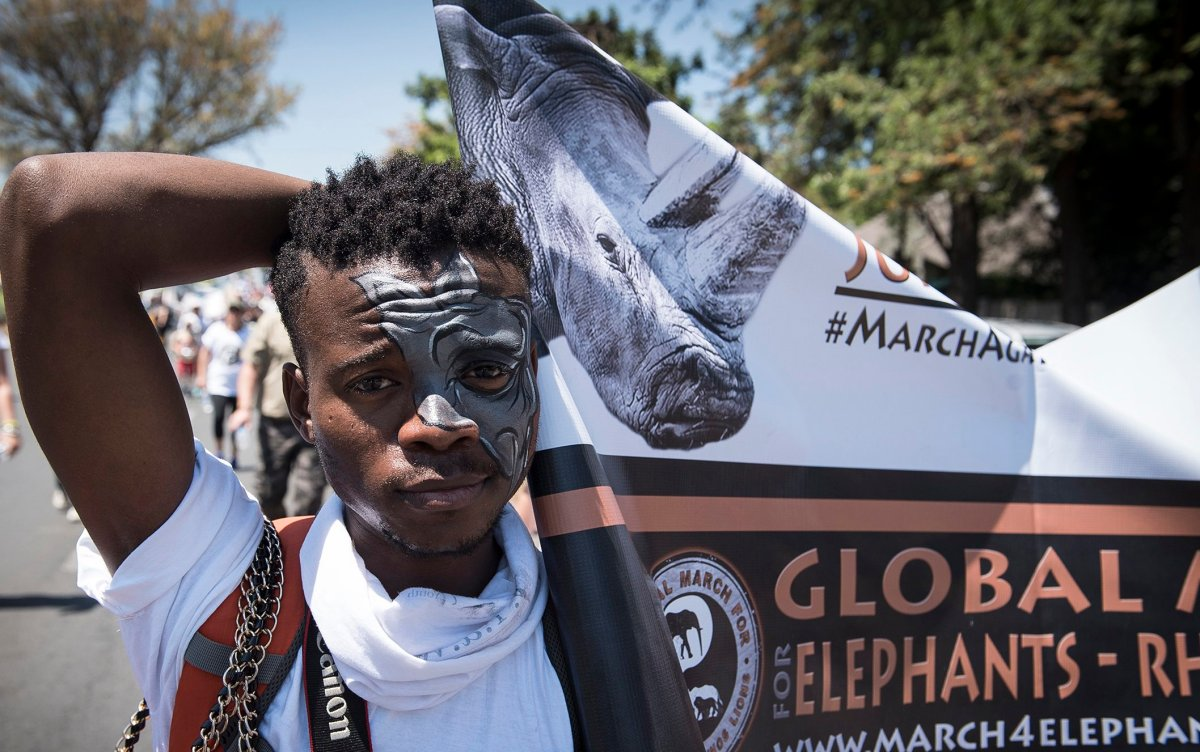 Protesters take part in a march in Johannesburg, South Africa, Saturday, Oct. 3, 2015, against the hunting of lions, rhinos and elephants.