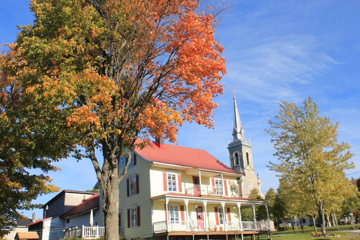 """You still have time to go out and chase fall's colours, also known as """"leaf peeping.""""."""