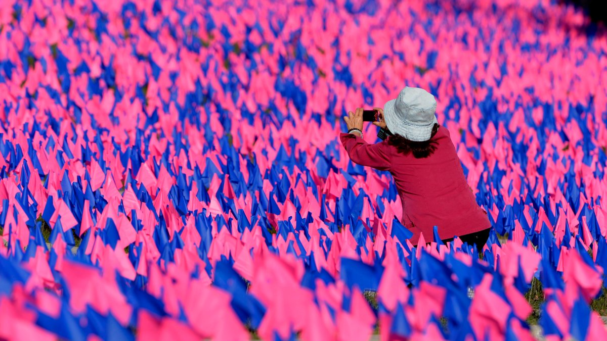A tourist takes a photo of thousands of pink and blue flags in front of Parliament Hill as an anti-abortion group raises awareness Thursday October 2, 2014 in Ottawa.