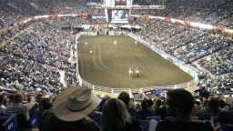 Continue reading: Red Deer to bid on hosting Canadian Finals Rodeo, Saskatoon also interested