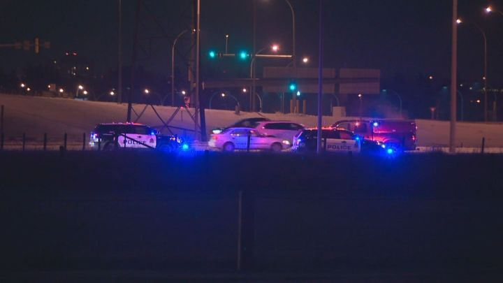 A man was arrested in west Edmonton after he allegedly assaulted an officer and then climbed a tree to escape police on Anthony Henday Drive near the 87th Avenue overpass. November 25, 2015.