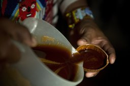 Continue reading: Hallucinogen that heals? One B.C. psychotherapist's experience with ayahuasca