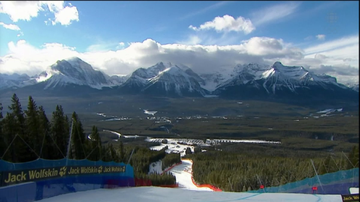 Lake Louise in court for cutting down endangered trees.