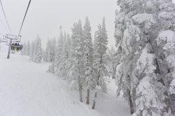 Continue reading: Where's all the snow this season? Colorado