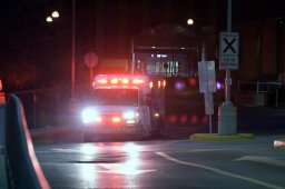 Continue reading: Man, 70, dies after being struck by TTC bus