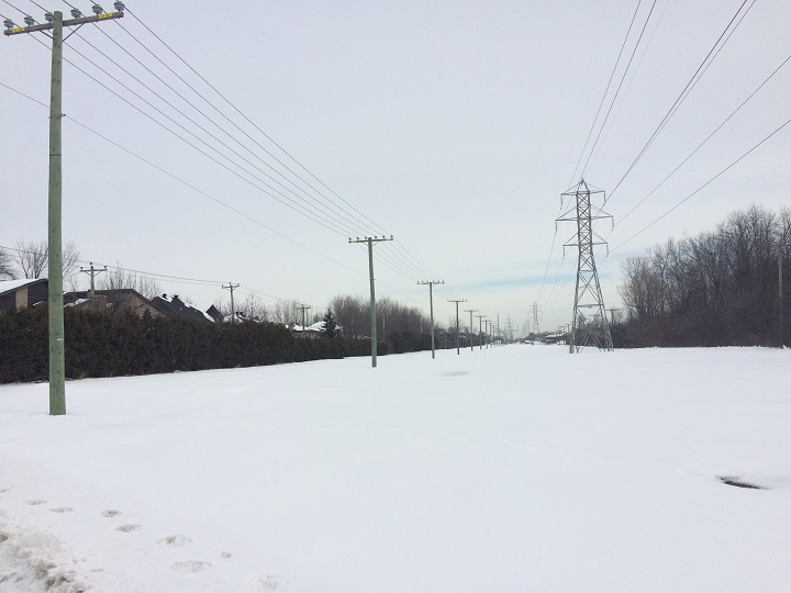 A Hydro-Quebec transmission line in Pointe-Claire, Monday, February 22, 2016.