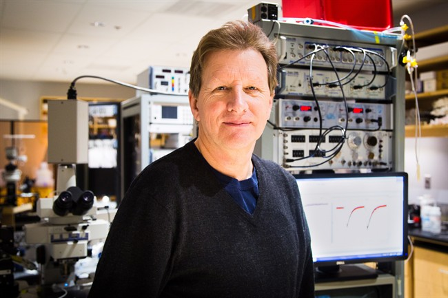 Neuroscientist Graham Collingridge is shown in a handout photo. Colleridge is among three scientists receiving the world's most valuable prize for brain research in recognition of their work on the mechanisms of memory.