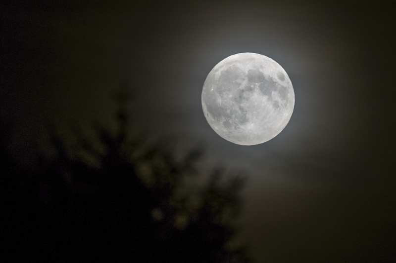 Should Easter be on a fixed date, or should it depend on the full moon? The debate isn't likely to be resolved any time soon.