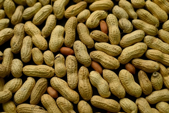 Doctors have been testing daily doses of peanut flour, contained in a capsule and sprinkled over food, as a way to prevent that.