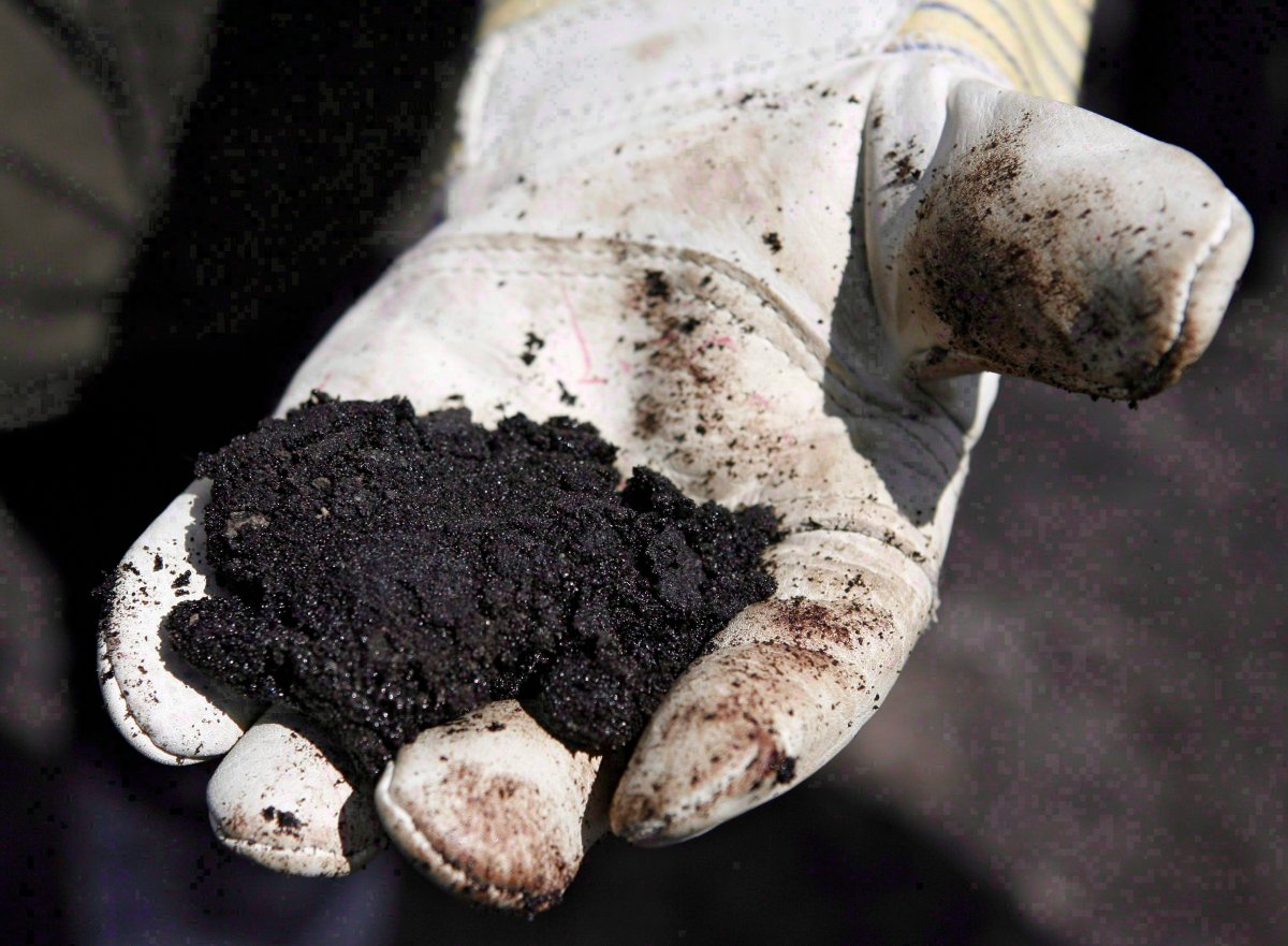 An oil worker holds raw oilsands near Fort McMurray, Alta., on July 9, 2008. THE CANADIAN PRESS/Jeff McIntosh.