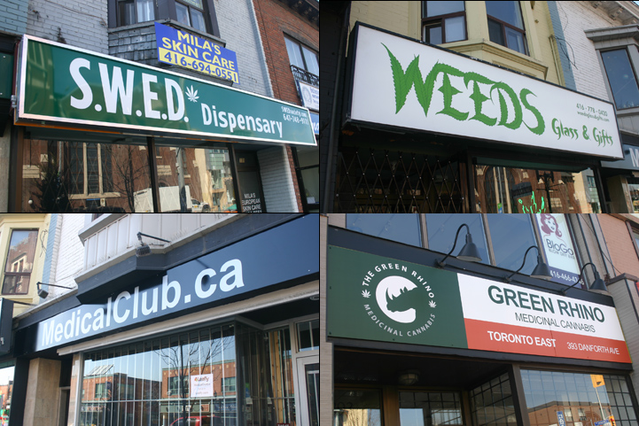 Four marijuana dispensaries line a short stretch of Toronto's Danforth Ave.
