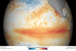 Continue reading: El Niño weakens, La Niña expected as meteorologists predict cool fall