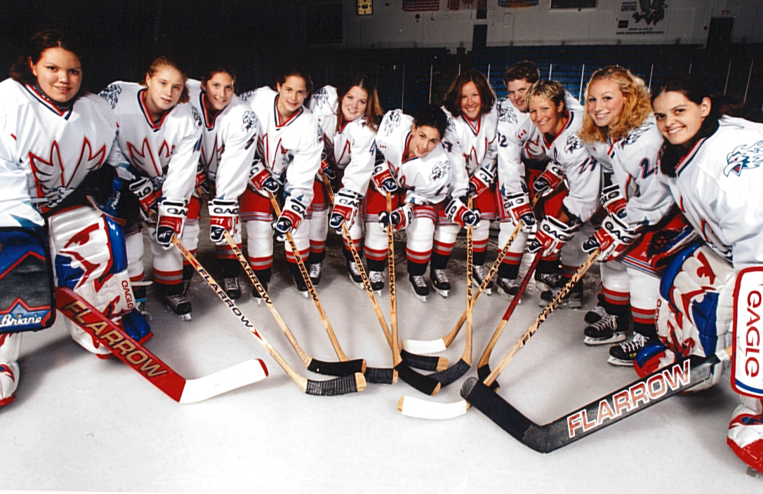 The Vancouver Griffins were the city's one and only professional women's hockey team. The team folded after just three years of existence in 2003. Are Vancouver fans ready for another professional women's team in their city? .