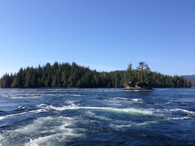 The Nakwakto Rapids can run up to 17 knots during peak tidal changes.