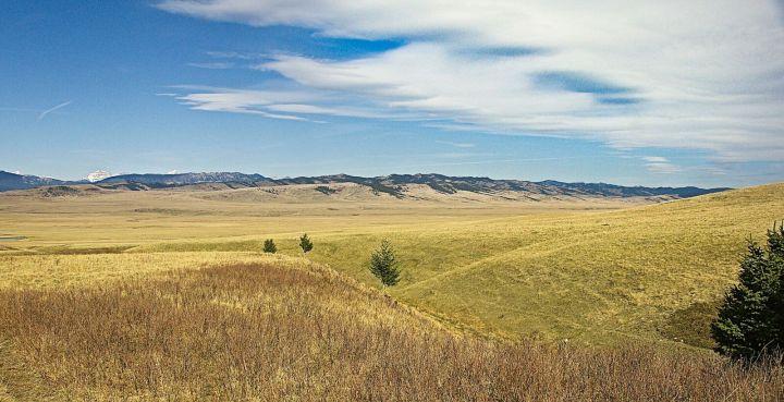 King Ranch in southern Alberta