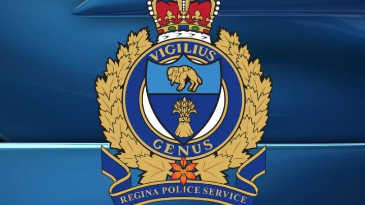 A Regina couple is facing 73 charges after allegedly gathering information about victims and forging documents in their name, among other offences.