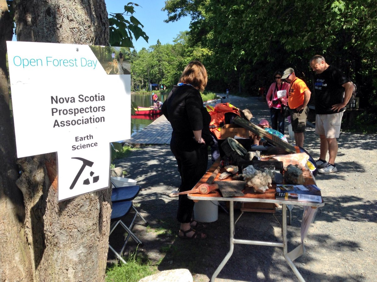 Open Forest Day at Shubie Park in Dartmouth on June 25, 2016.