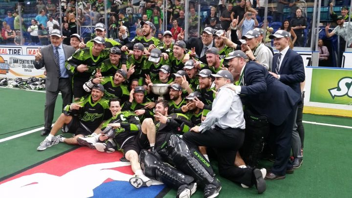 Saskatoon sports scene packed with highlights in 2016 - image
