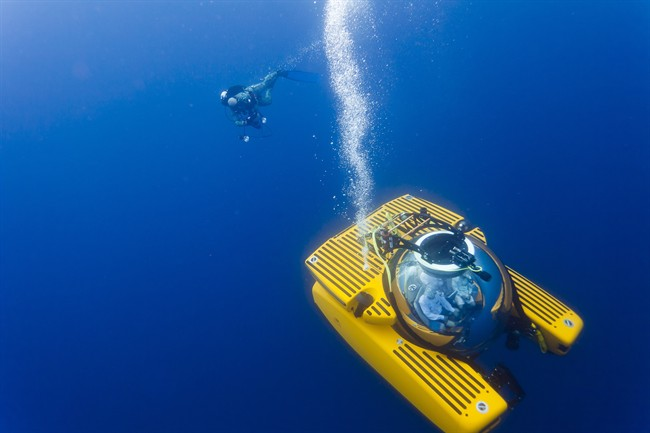 A Triton submersible craft and diver are seen in this undated handout photo. Canada is joining a new mission to research Earth's most unexplored frontier: the deep ocean. A Department of Fisheries and Oceans research vessel is part of a team assembled by the Nekton marine research foundation to explore areas off Bermuda, Nova Scotia and in the Sargasso Sea. THE CANADIAN PRESS/HO-Nekton.