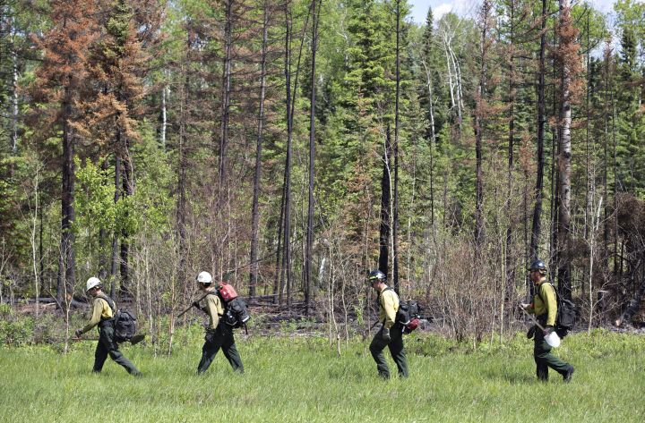 Fire crews work the tree line in Anzac near Fort McMurray, Alta., on Saturday, June 4, 2016.  On Monday, July 4, 2016 the Fort McMurray wildfire was classified as under control.