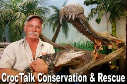 Continue reading: CrocTalk owner pleads guilty wildlife charges