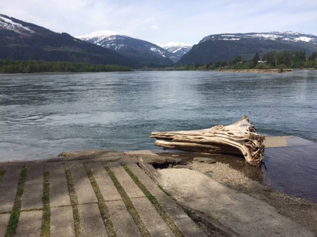 Revelstoke RCMP told Global News in April that the then-missing man was near this log when he slipped and fell into the Columbia River.