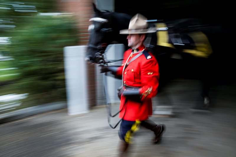 A member of the RCMP Musicla Ride leads his horse out of the barns at Spruce Meadows in Calgary, Alta., Friday, Sept. 12, 2014.